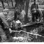 Бензопила Штиль 1943 г.в.