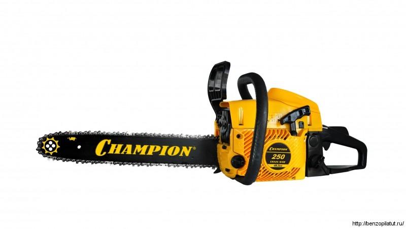 Champion 250-18